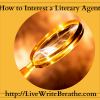 How to Interest a Literary Agent