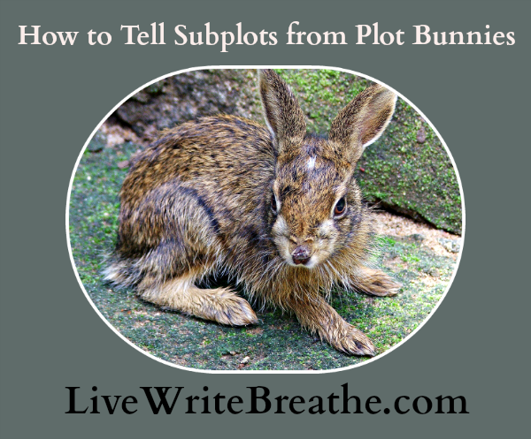 How to Tell Subplots from Plot Bunnies @JanalynVoigt