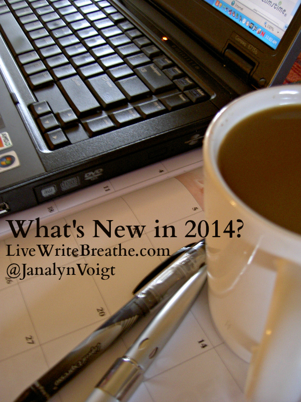 What's New in 2014 @Janalyn Voigt