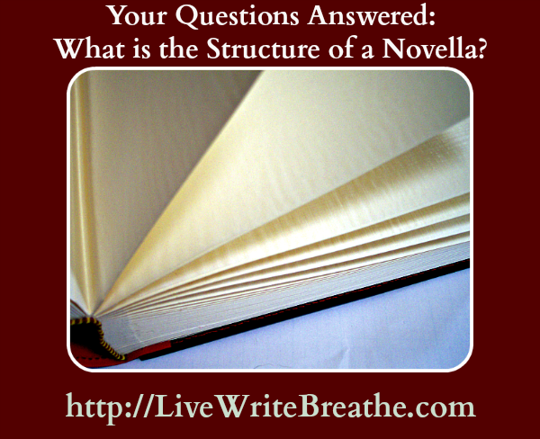 Structure of a Novella by Janalyn Voigt