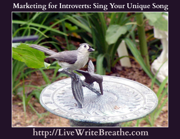 Marketing a Book for Introverted Writers |Live Write Breathe