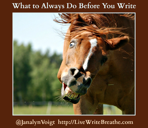 What to Always Do Before You Write via @JanalynVoigt | Live Write Breathe