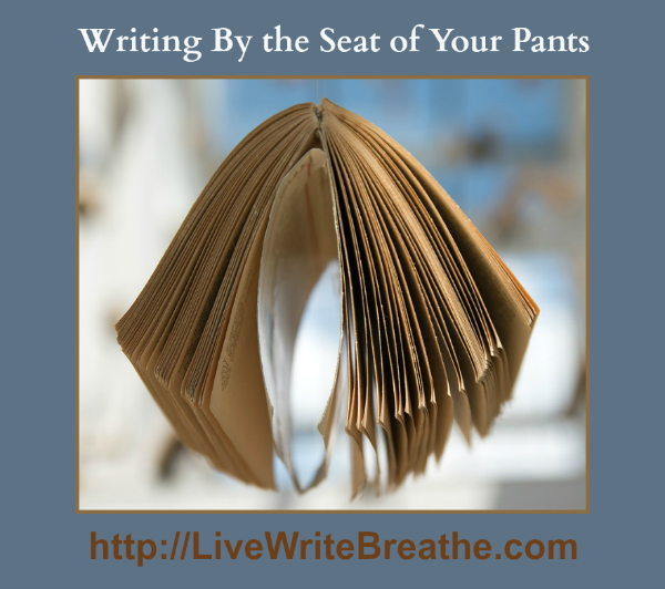 Writing By the Seat of Your Pants via @JanalynVoigt | Live Write Breathe