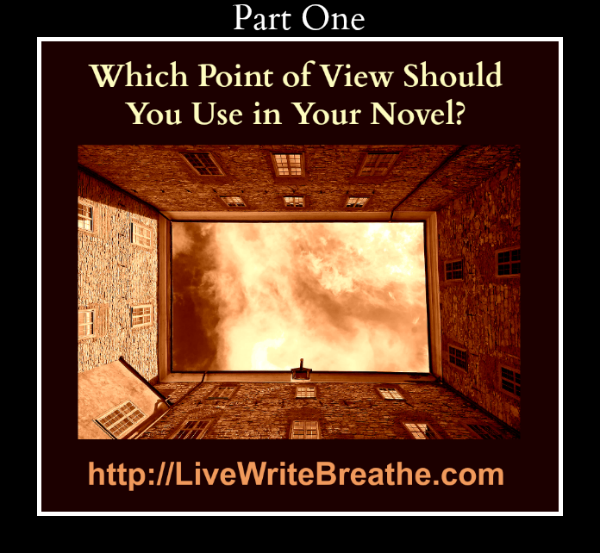 Which Point of View Should You Use in Your Novel Part 1 via @JanalynVoigt for Live Write Breathe