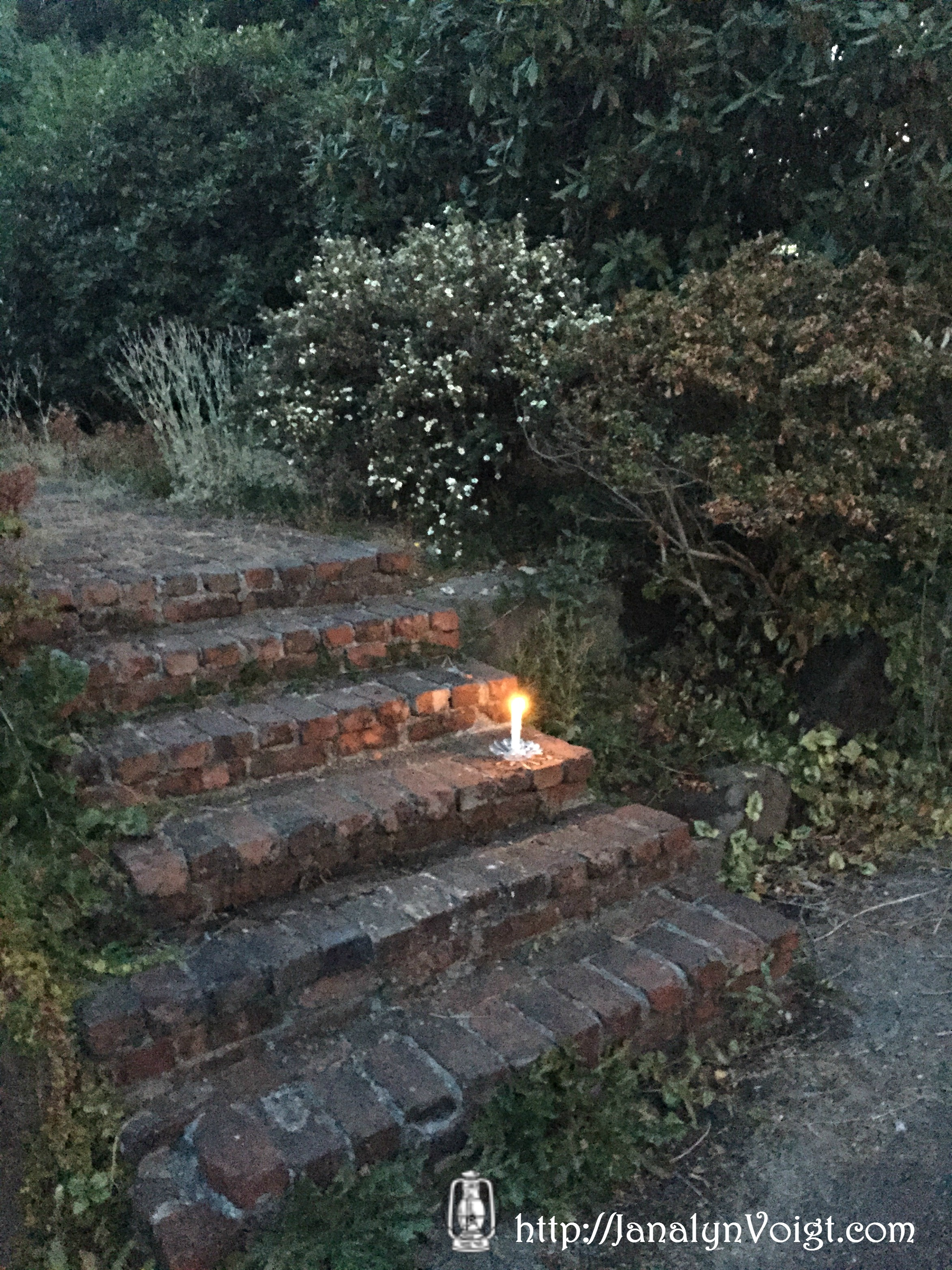 Visual Writing Prompts: Garden at Dusk from Janalyn Voigt