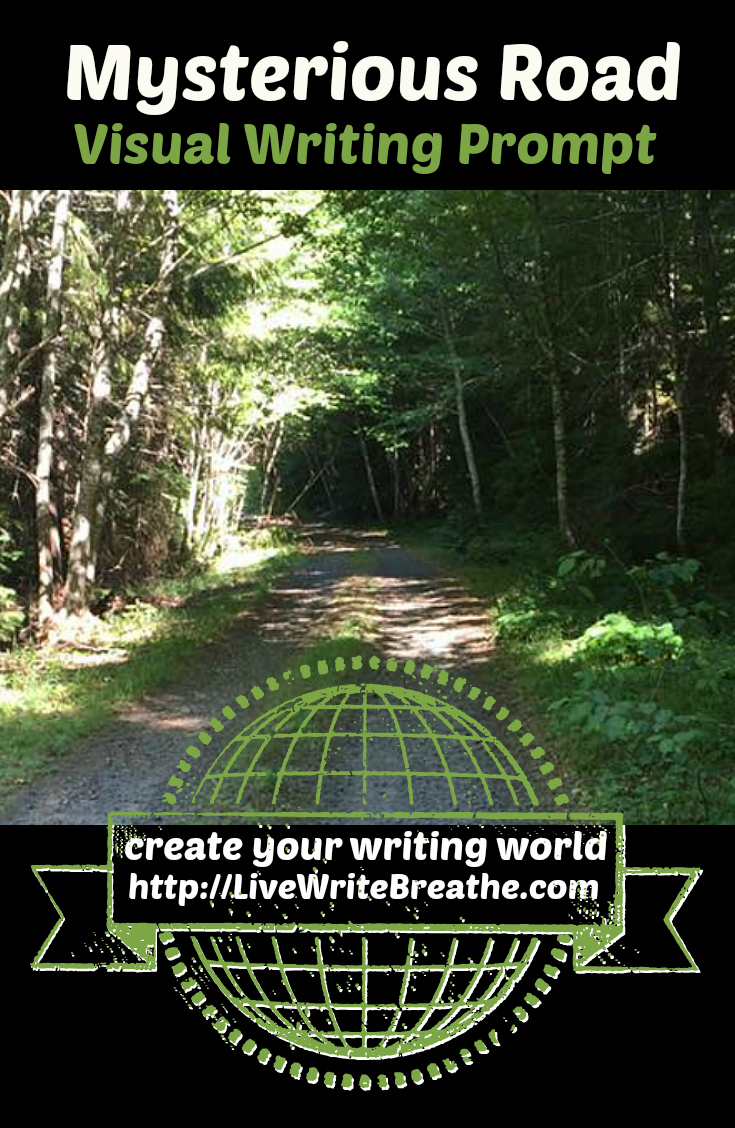 Mysterious Road Visual Writing Prompt via @JanalynVoigt | Live Write Breathe